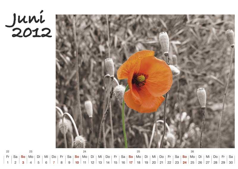 Kalender-A5Q6